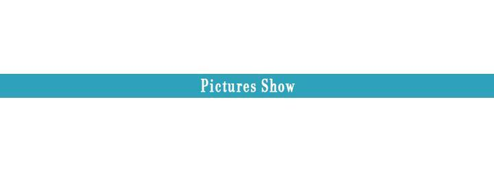 2- picture show