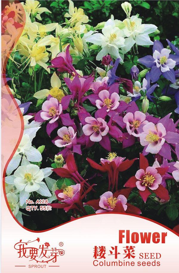 Multicolor Aquilegia seeds, Columbine seeds, Perennial flower seeds, I want to sprout Original package, 55 particles/bag