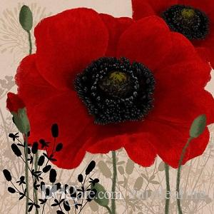 Çerçeveli Linda Ahşap: Kırmızı Haşhaş I, Saf El Boyalı çiçek Duvar Sanat Ev Deco Tuval Üzerine Yağlıboya. Multi boyutları Ücretsiz Kargo Fl011