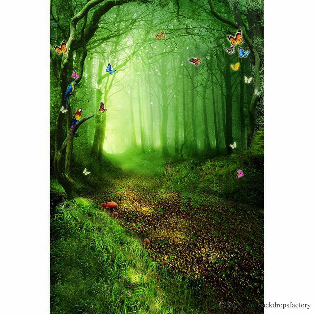Сказочный Лес фотостудия Booth фоне деревьев Грибы Красочные бабочки Дети Дети Фото Фон Фэнтези