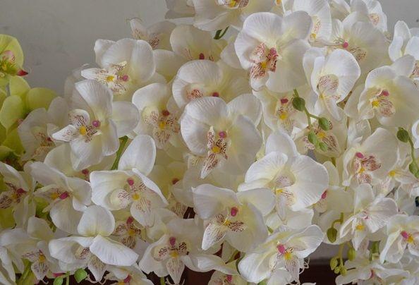"""Phalaenopsis Orchid Silk Flower Heads - 4.8 """"- Fleurs Artificielles Heads Fournitures Lot en gros pour le mariage Faire des pinces à cheveux de mariée Bandeaux"""