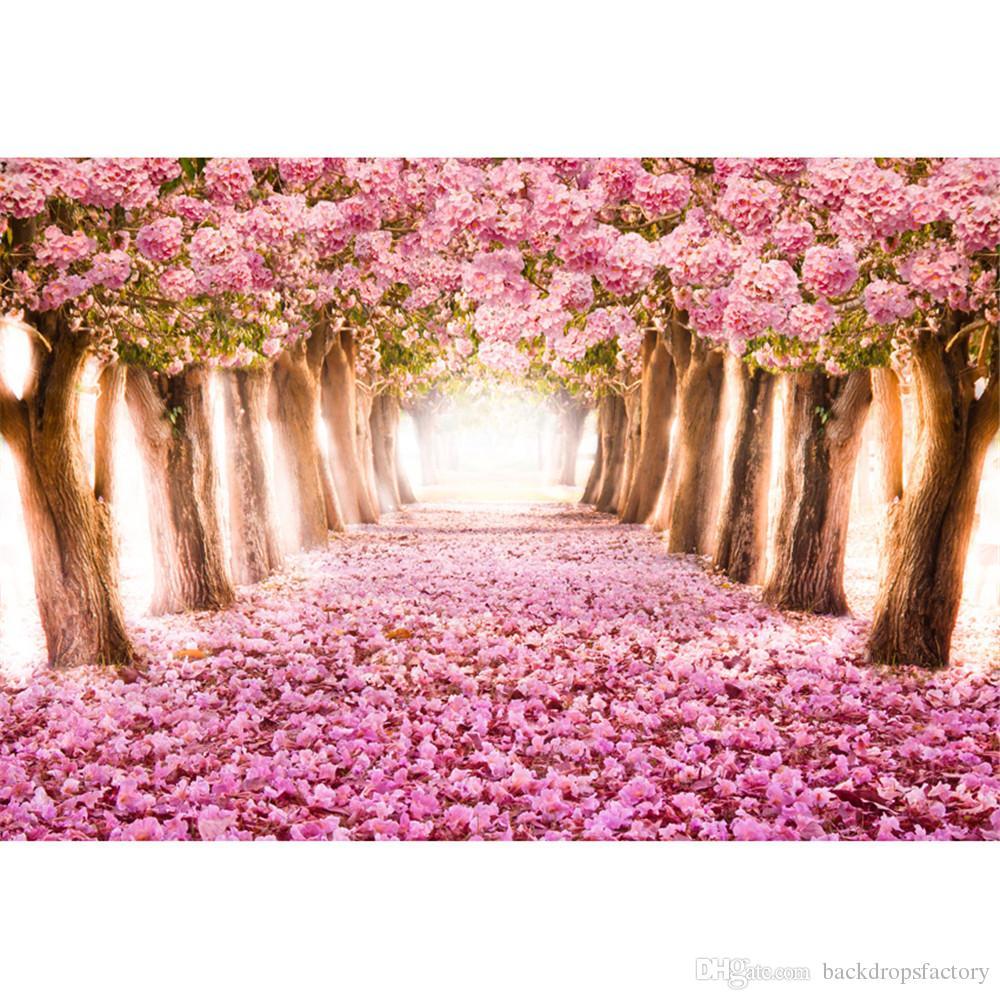 Sfondi di fiori rosa Cherry Blossoms per Studio Petals Covered Road Trees Bambini bambini Floral Photography fondali