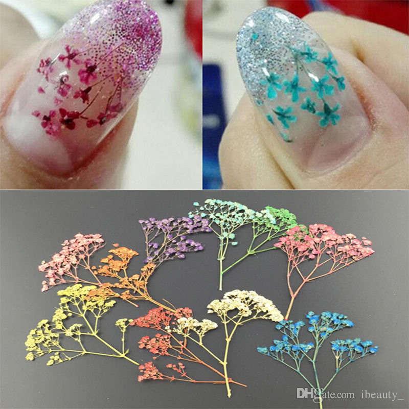 12pcs / Bag secco Nail di arte del fiore reale Secco fiori Nail Art Sticker 3D fai da te decorazioni di punte per arte del chiodo Diversi Colori