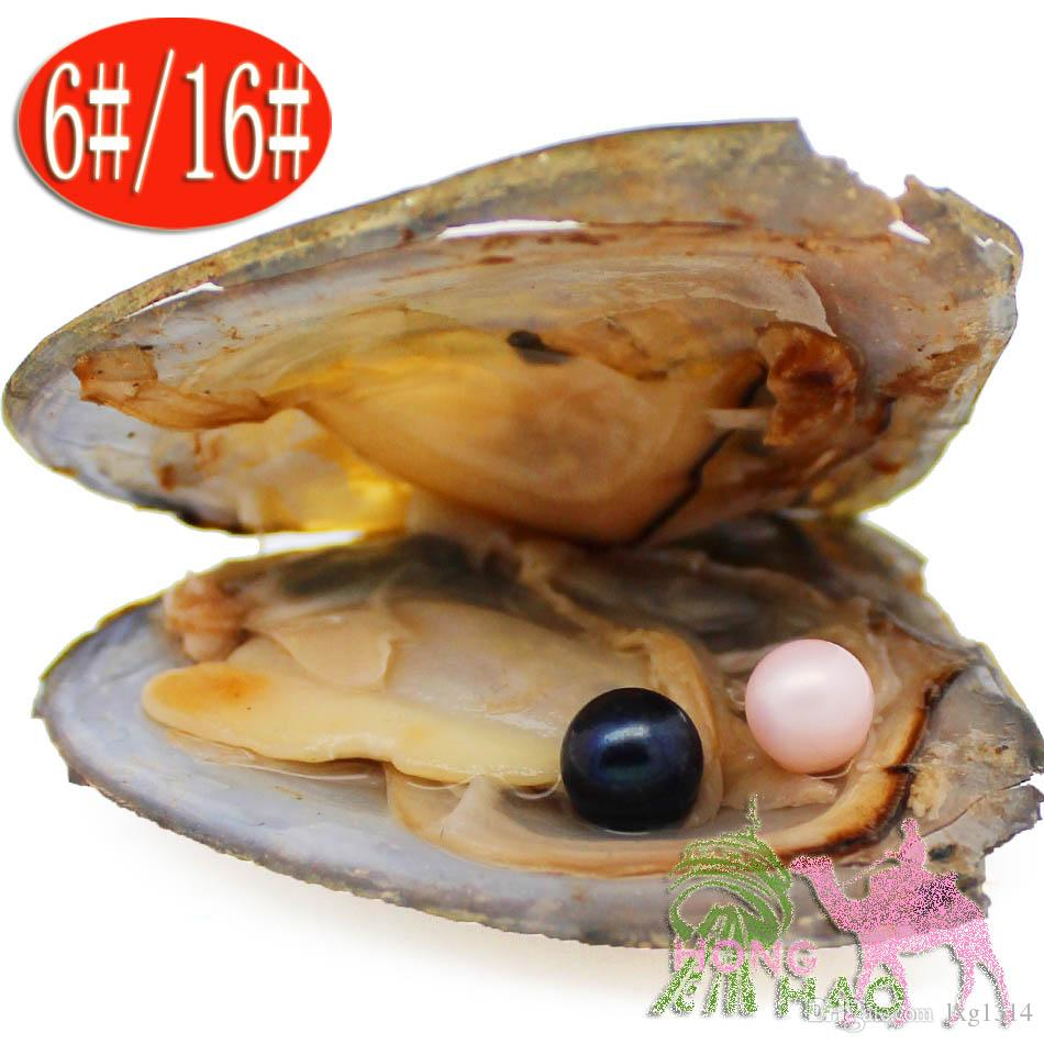 Selling 2018 popular hope pearl oyster 6-7 mm artificial color 28-color twins in Akoya oyster shell put pearls