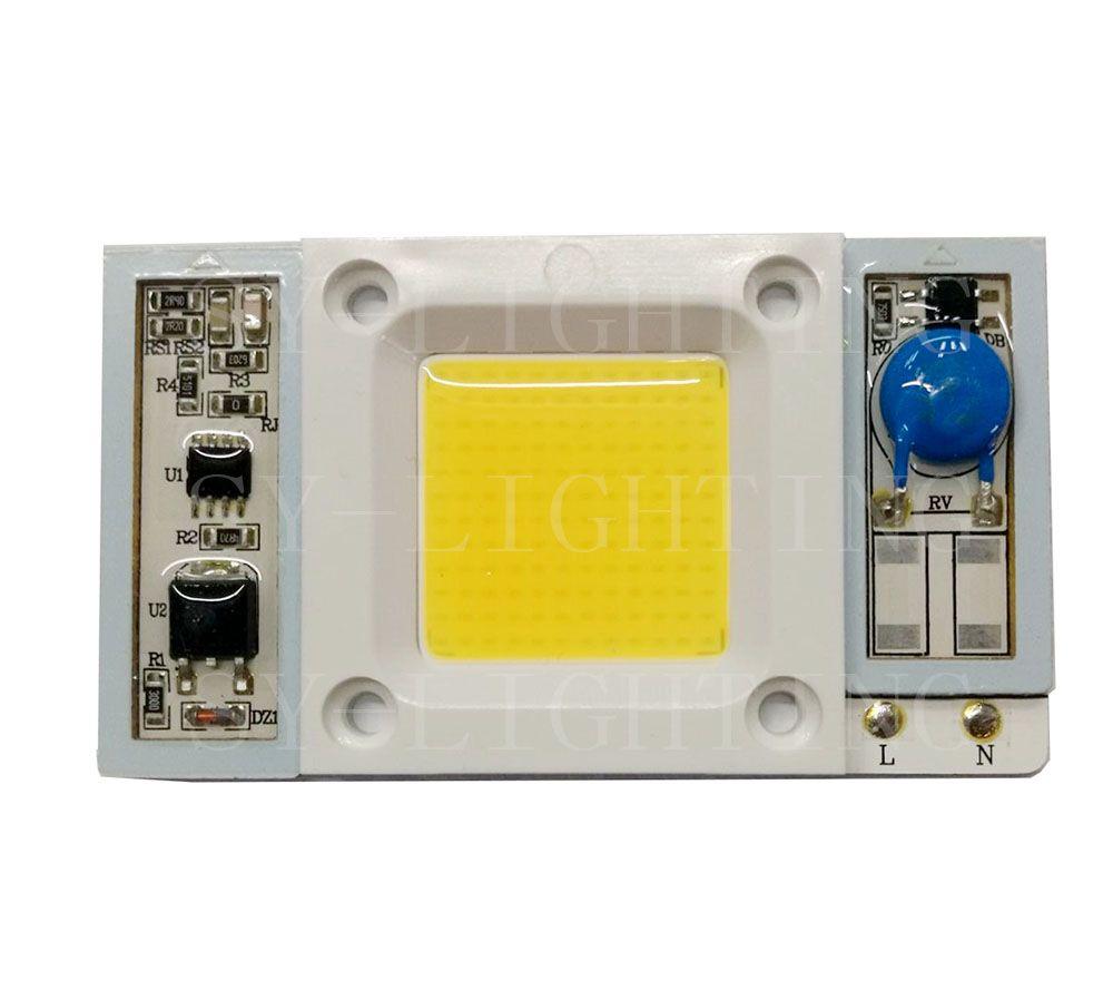 Haute puissance 50W Driverless AC110V / 220V puce LED pilote intégré Full Spectrum 400-840nm White Light pour aquarium
