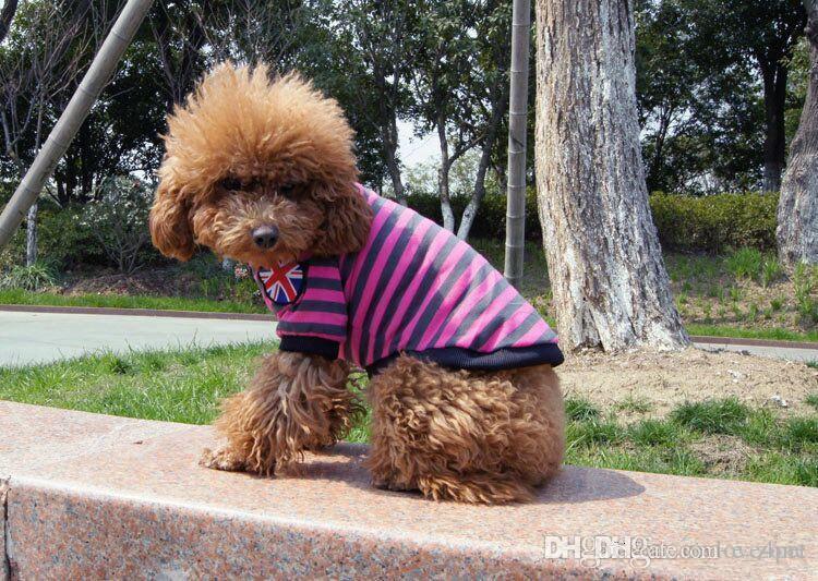 D24 Pies Summer T-shirt 100% bawełniane ubrania zwierząt domowych lato ubrania pies wiosna koszula bawełniane koszule darmowa wysyłka