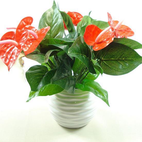 Antoryum, yeşil saksı antoryum çiçekleri kapalı yeşil bitkiler balkon ofis masaüstü yapay çiçekler bonsai