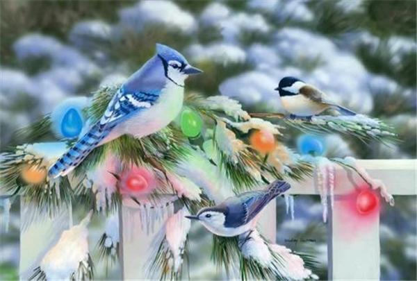 Новый алмаз вышивка рукоделие diy Алмаз живопись вышивки крестом наборы животных птица сорока снег полный круглый бриллиант мозаика Декор комнаты yx0337