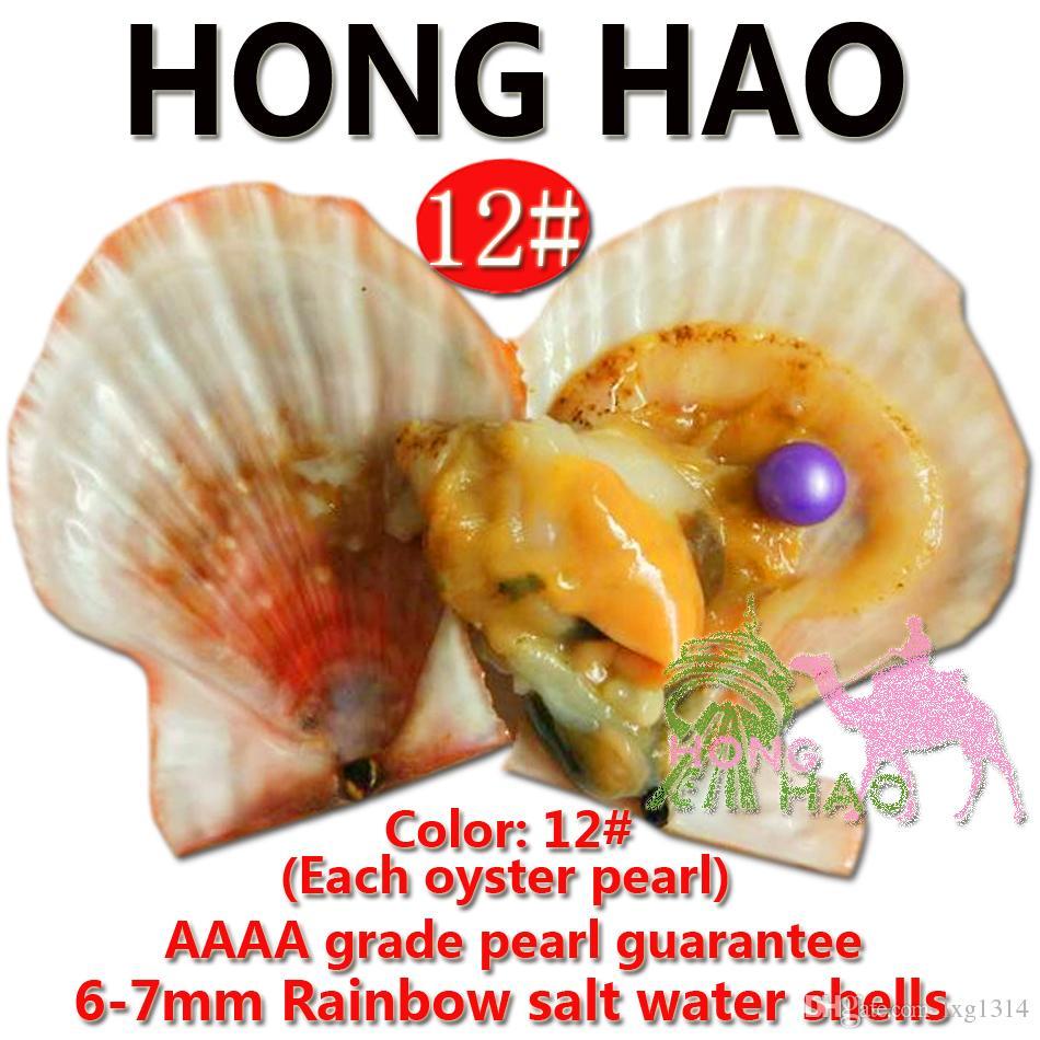 Austern Perlen in Süßwasser Natürliche Perlen Großhandel, Big Wish Pearl Oyster Shell mit vakuumverpacktem Geschenk Großhandel Multi Farbe