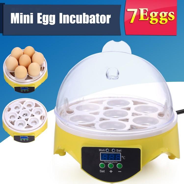 mini-egg-incubator-1