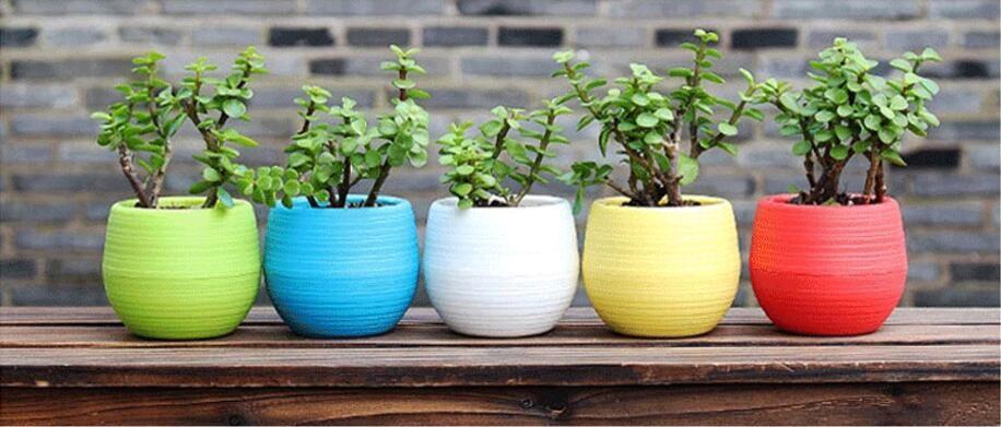 200pcs Gardening Flower Pots Small Mini Colorful Plastic Nursery Flower Planter Pots Garden Deco Gardening Tool