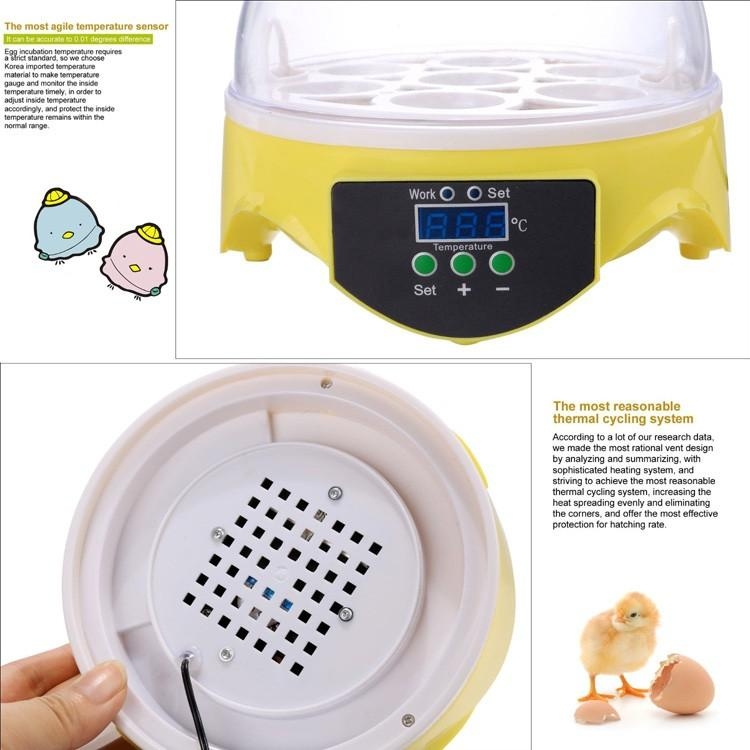 mini-egg-incubator-6