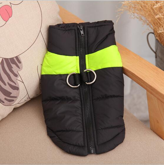 NEW Factory Outlets In stock Free Shipping Fashion dog clothes Wholesale and Retail designer pet clothing