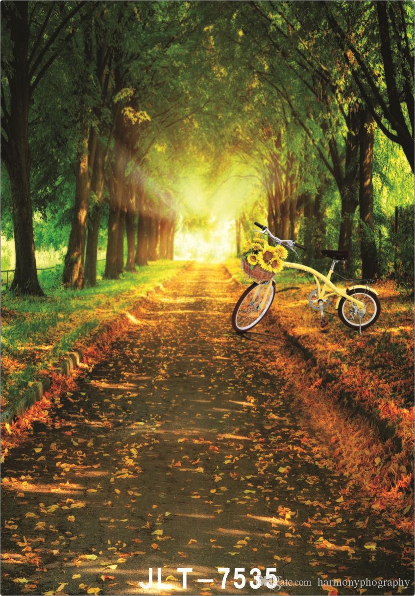 chemin d'arbre scénique jaune vélo mariage enfants vinyle arrière-plans pour les accessoires de studio photo bébé toiles de fond pour la photographie