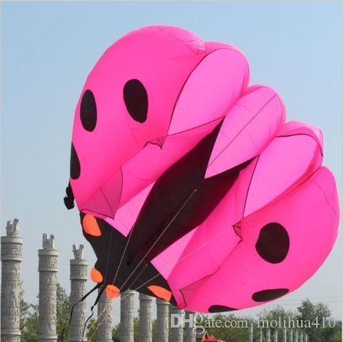 3D riesiger weicher riesiger Marienkäfer-Drachen-im Freiensport, der einfach ist, um Rosa zu fliegen