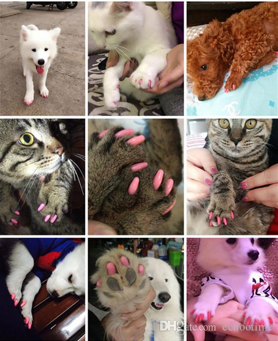 Soft Dog Cat Paw Claw Colorful Pet Puppy Kitten Nail Caps Adhesive Glue Control Nail Protector Caps Cover Set 20pcs/lot