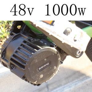 48v 1000w