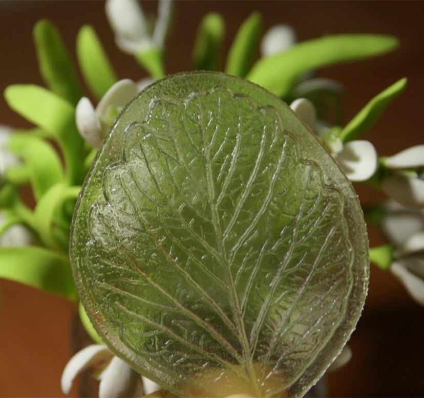 Varietà di fiori di pane di foglia Stampo di argilla polimerica / muffa Fimo 7.5CM * 6.5CM / stampo veiner fondente, strumento di impressione fimo