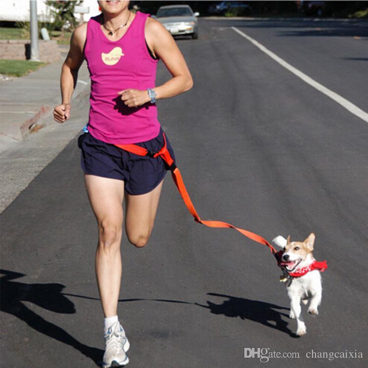 (50 قطعة / الكثير) العلامة التجارية الجديدة نايلون الأيدي الحرة المشي الكلب المقاود الجري الرصاص مصنع الكلب المنتجات