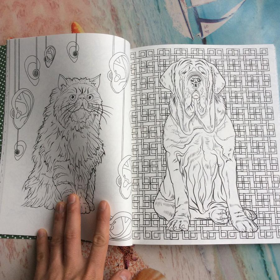 96 Pages Harry Potter Coloring Book For Adults Secret Garden Book