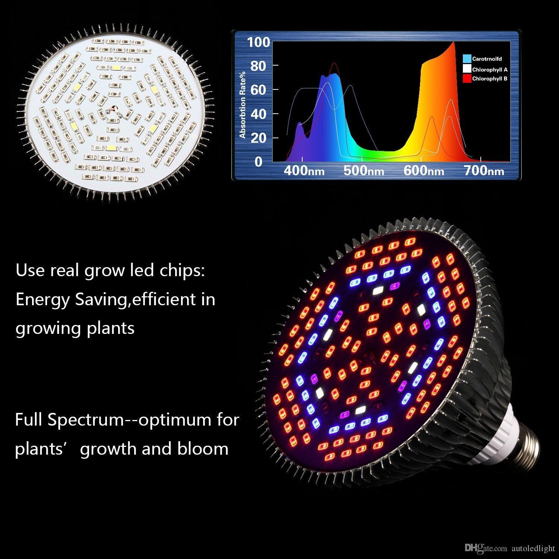 80W LED wachsen volles Spektrum der Glühlampe-E27 wachsen Lichter Zimmerpflanzen