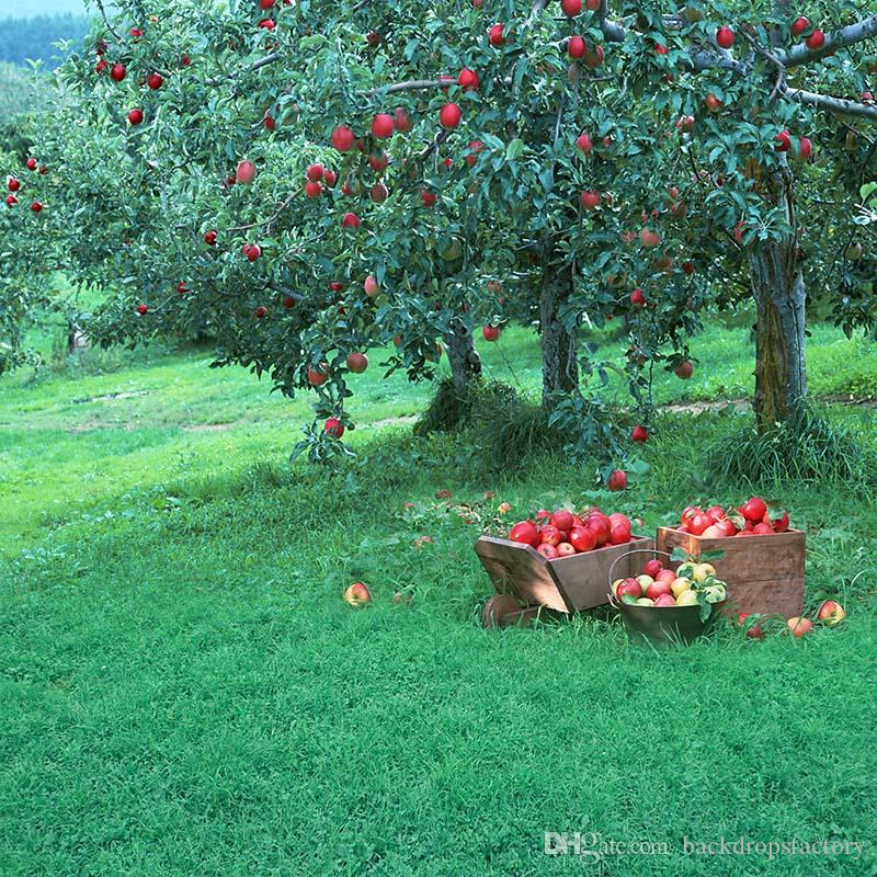 Kids Photography Backdrops Fruit Garden Harvest Theme Green Grassland Apple Trees Children Outdoor Photo Studio Background