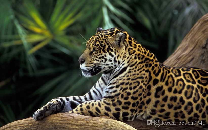 Decoración del hogar Arte de la pared Animal Jaguar Rainforest pintura al óleo Imagen HD Impreso En Lienzo Para regalos decorativos
