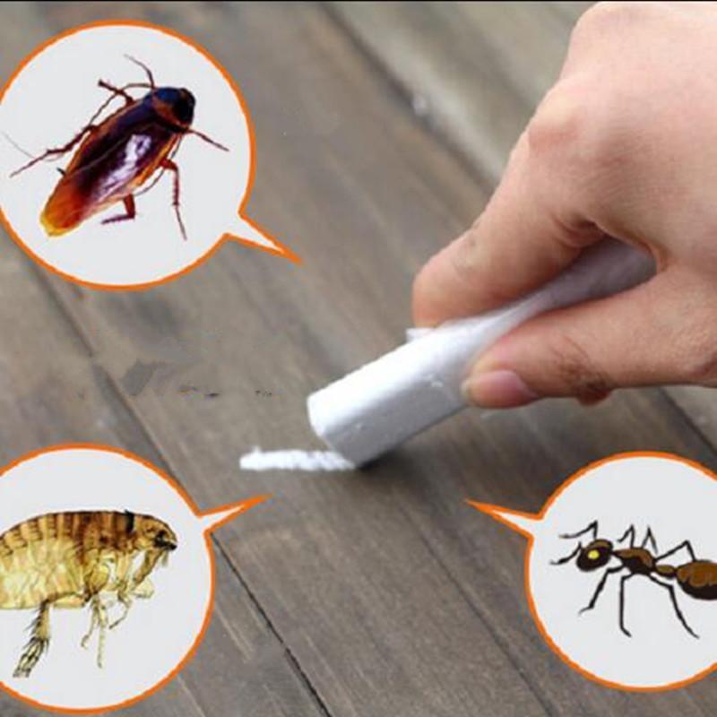 محفظة 5pcs! قاتل الطباشير الفعال قتل الصراصير برغوث علة النمل لمكافحة الحشرات