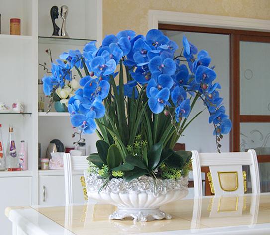 Compre Arreglo De Orquídeas Azules De Gran Tamaño Artificial Orificio Real Arreglo Floral Orquídea Bonsai Sólo Sin Jarrón A 11578 Del Chinasmoke