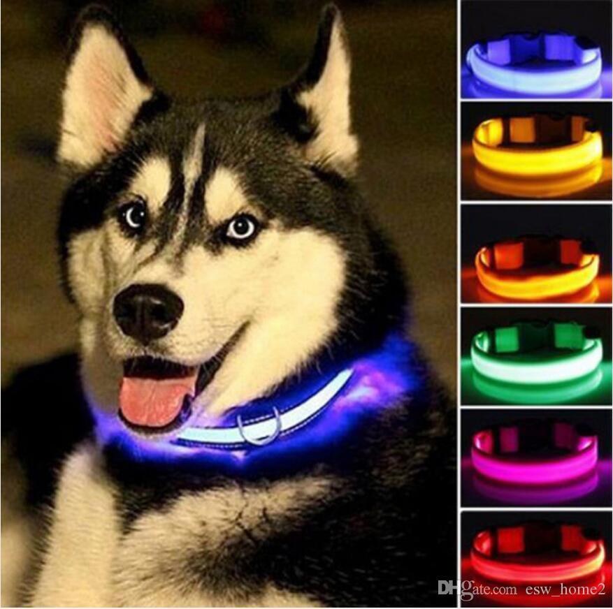 طوق النايلون LED كلب ليلة السلامة وميض يتوهج في الظلام الكلب المقود اللوازم الكلاب مضيئة نيون الياقات الحيوانات الأليفة