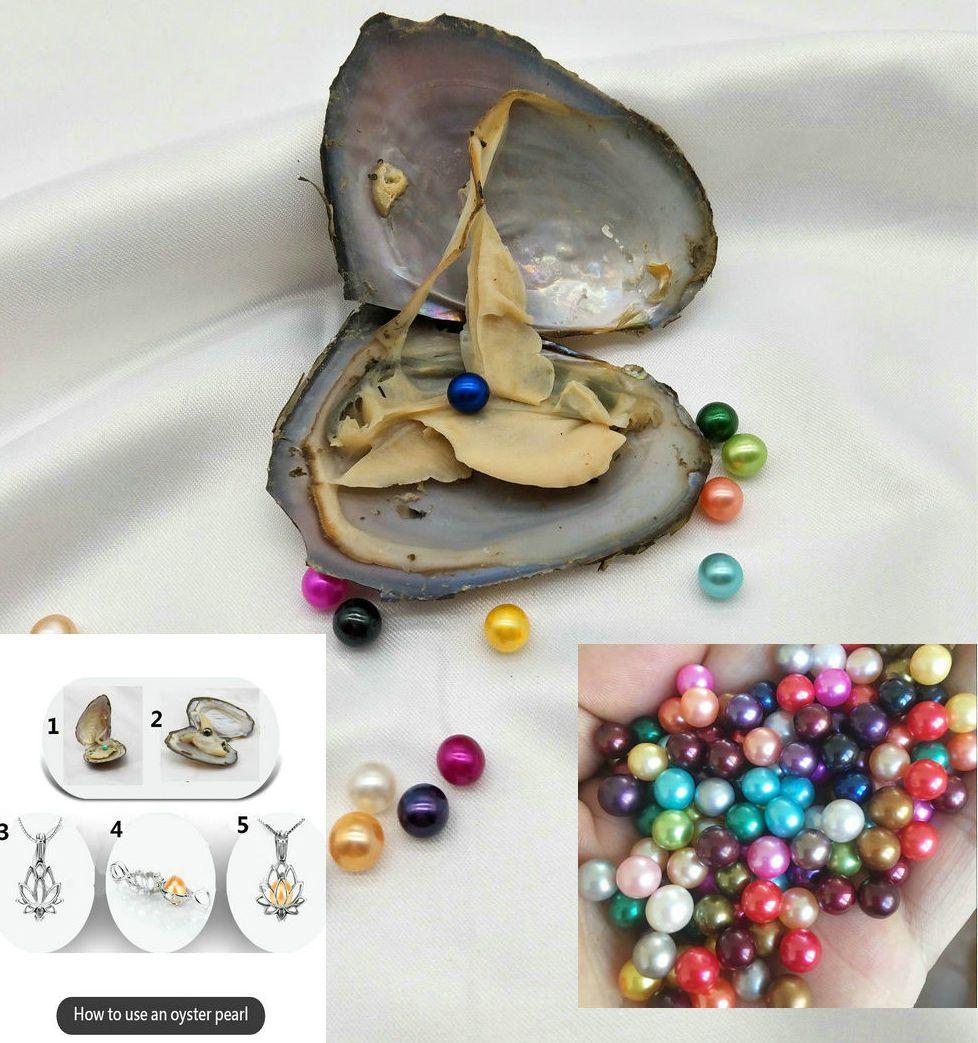 Hermosa perla de agua dulce redonda con perlas de concha de ostras 6-7 mm en la joyería Oyster Una Perlas ostras bricolaje
