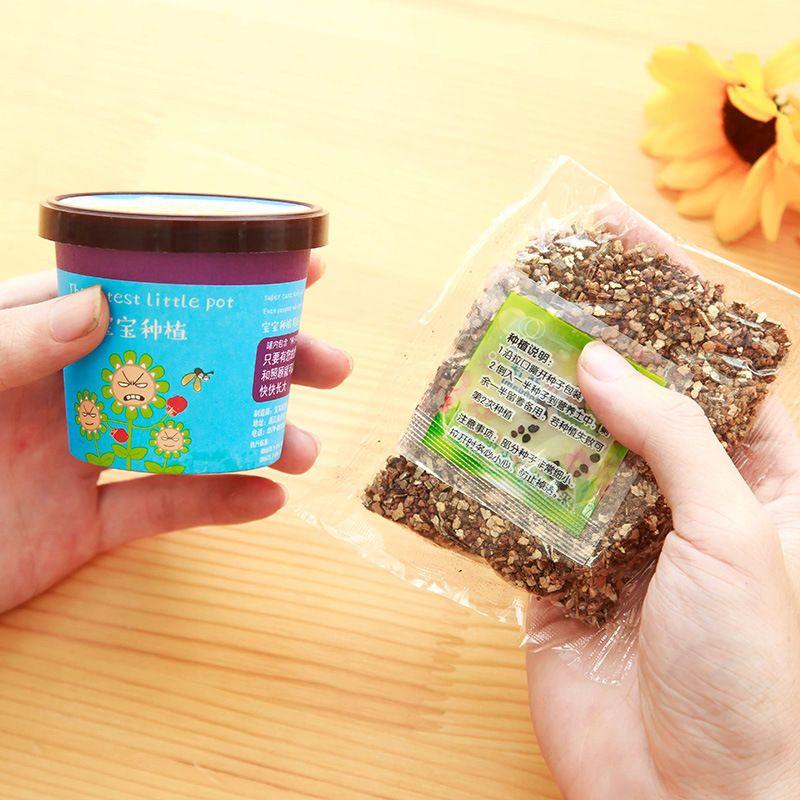 Mini plantes en pot Creative menthe tournesol lavande Pot Culture bébé cadeau Micro paysage bureau bureau ornement 1 2zm Hh