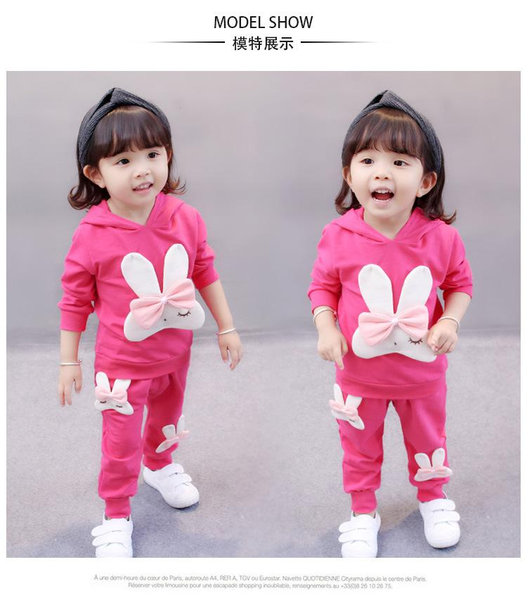 Toddler Baby Girls Clothes Baby Girls Autumn Outfits Clothes Girls clothes sets T-shirt+ Pants 2pcs/set Clothing
