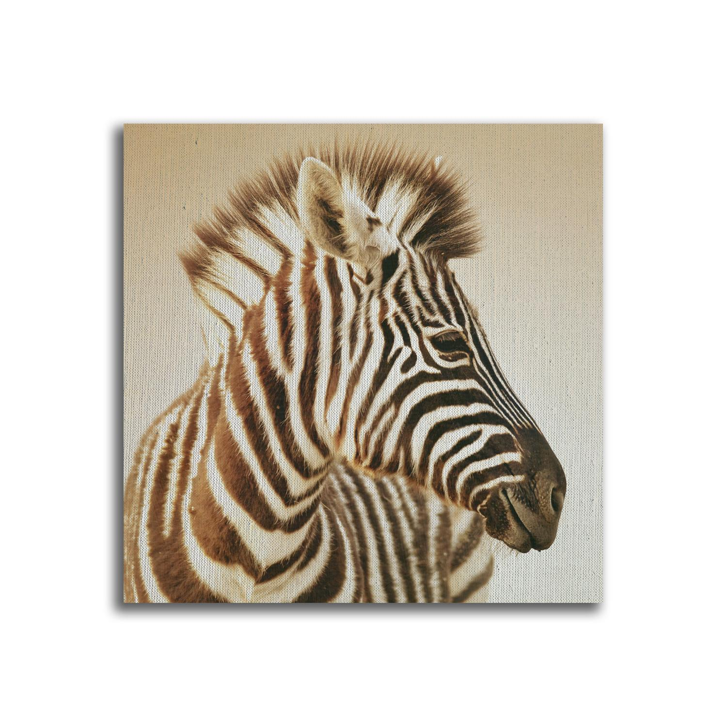 YJ ART zebra Unframed Modern Canvas Wall Art for Home and Office Decoration, Animal ,Frame painting prints