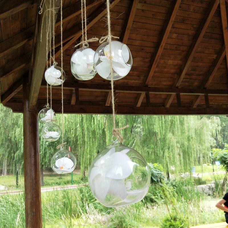 10 cm Colgante Creativo Florero de Cristal Suculento Planta de Aire Exhibición de Terrario, Decorativo Cristal Claro Colgante Planta de Aire Terrario