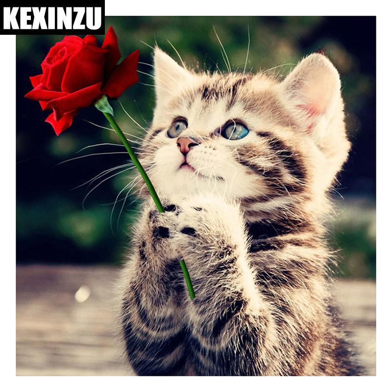 Yeni Varış Tam 5D Diy Daimond Boyama dua kedi Çiçek Çapraz geçiş Kare / Yuvarlak Rhinestones Elmas Nakış Mozaik