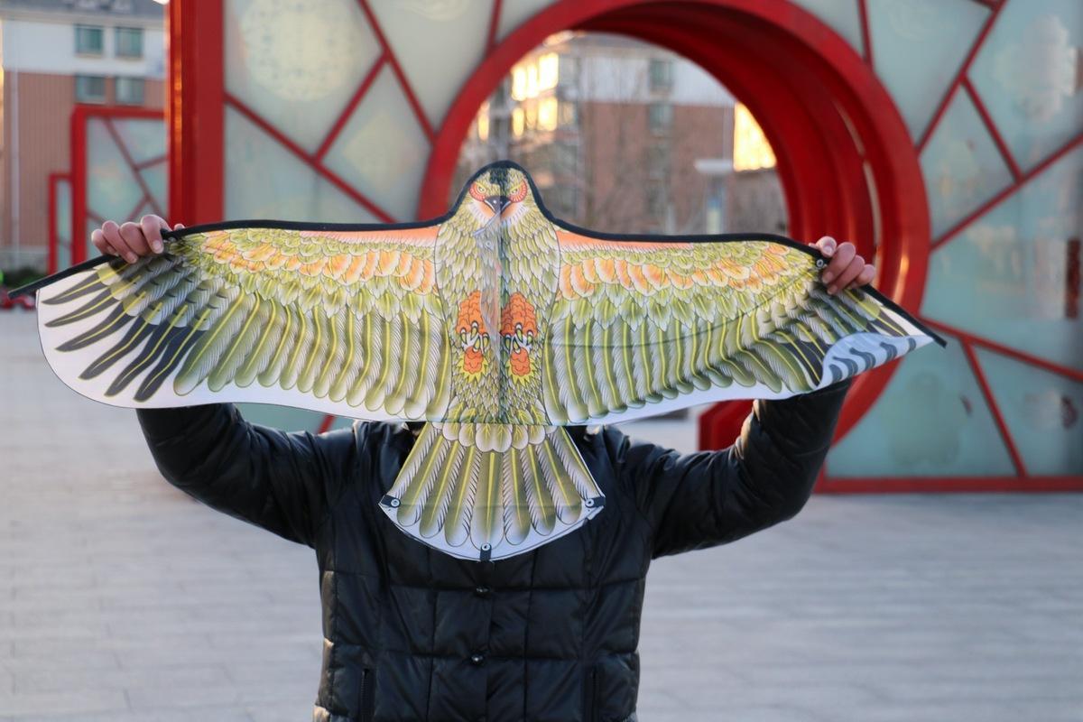 10 Pcs Mélanger Couleur Aléatoire DIY Eagle Peinture Cerfs-Volants En Gros En Plein Air Jouets Volants Sans Manche Ligne