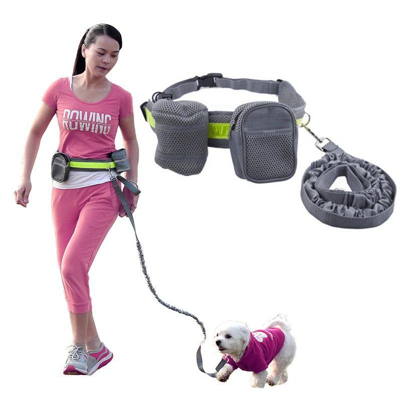صديقة للبيئة مطاطا حزام الجري الكلب الرصاص مقود الرياضة الهرولة المشي الياقة الحيوانات الأليفة حبل اليد الخصر الحرة الكلب مجموعة المقود