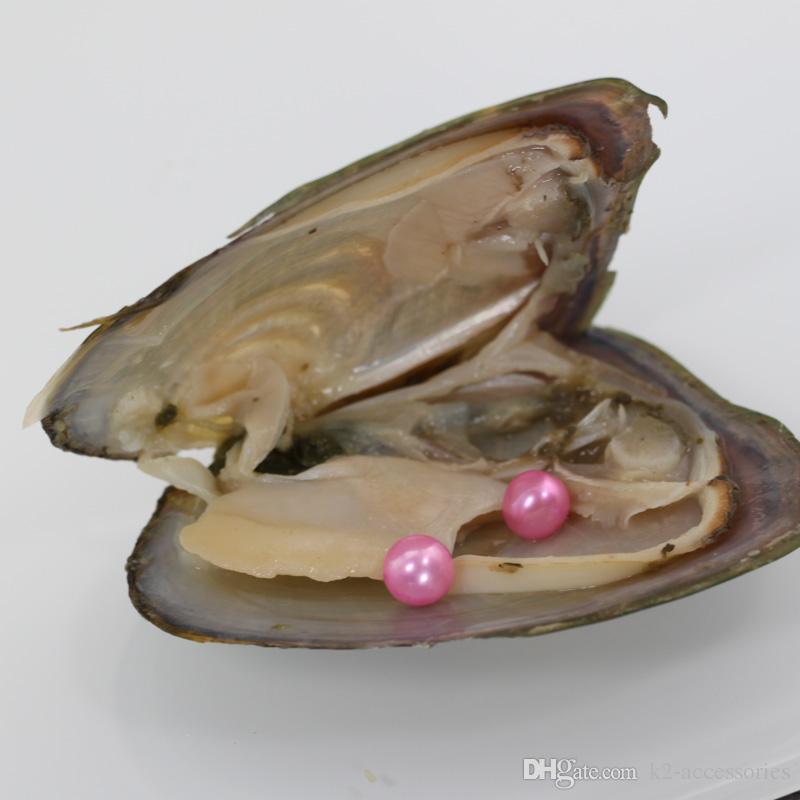 2018 AKOYa RUND Süßwasser-Zwillinge Perlen in Austern 27 Farben Perlen Austernperlen mit Vakuum-PackingJewelry Weihnachtsgeschenk Überraschung
