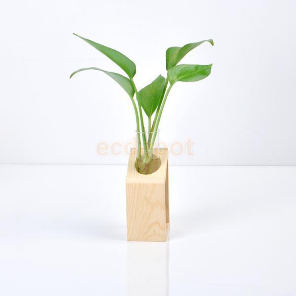 Dekorative Glas Blumenvase Rohr Flasche Hydroponische Terrarium Container w / Holz Halter