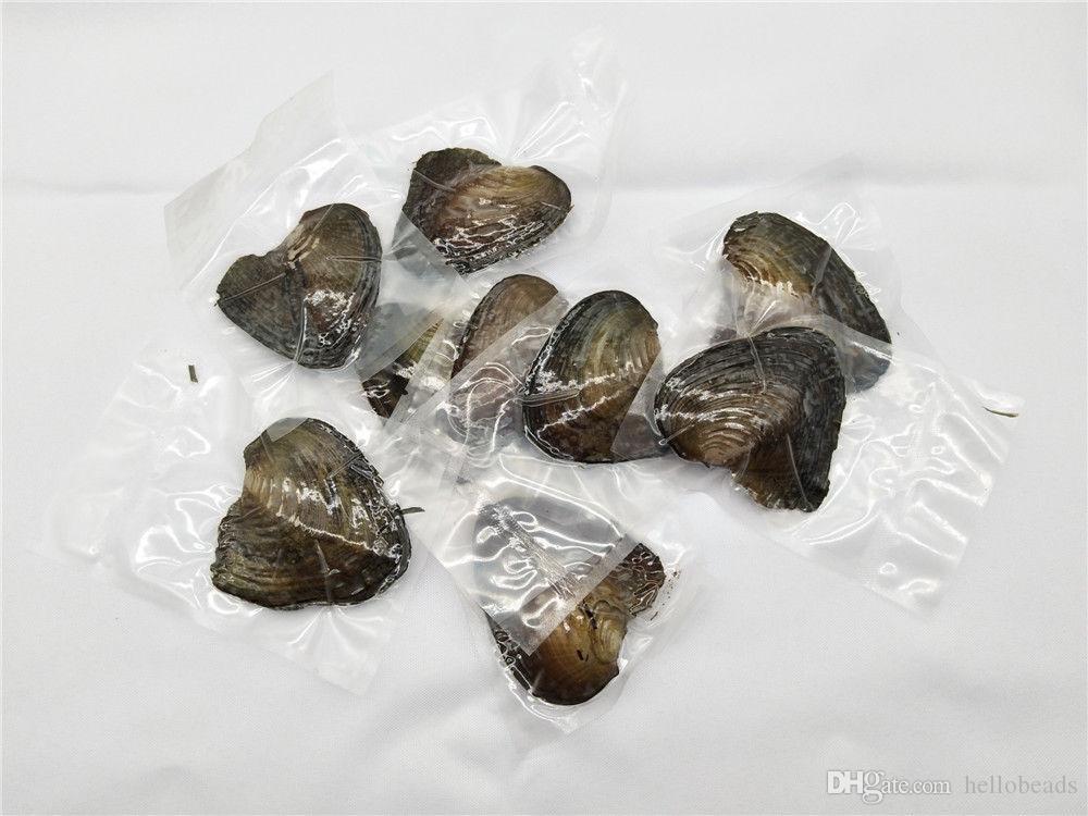 CREMA perlas de agua dulce redonda con Oyster 6-7 mm en la toma de joyería ostra ostras perlas de bricolaje
