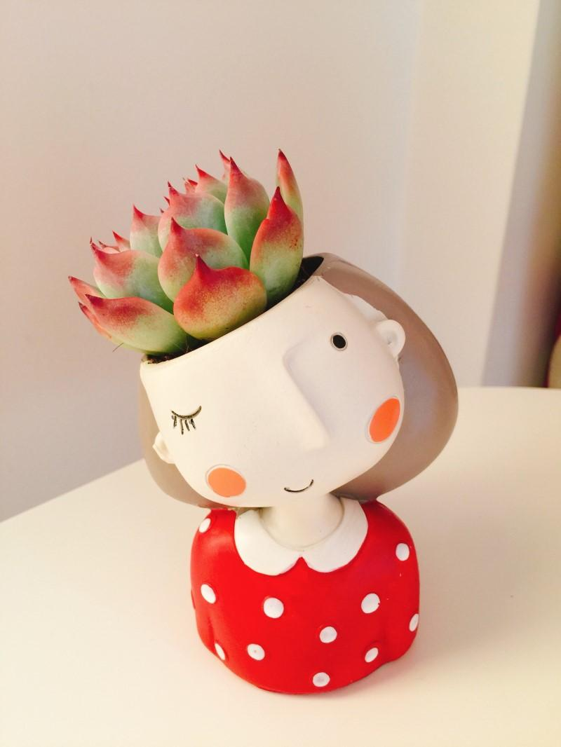 1pcs Small Flowerpot Creat Design Home Garden Mini Bonsai Cactus Planter Pots Succulent Plant Pot Wedding Birthday Gift Ideas washroom decoration