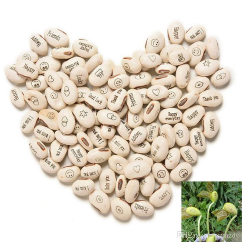 20 PCS Magic Growing Message Beans Seeds Magic Bean English Magic Bean Bonsai Green Office Home Decoration Rare Gift Plant