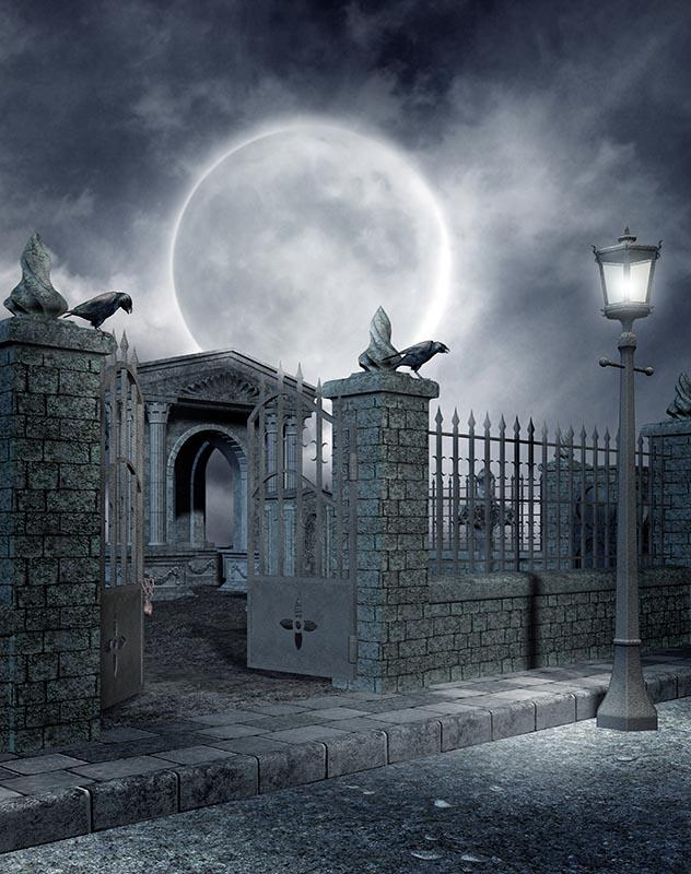 Cenários de fotografia Cinza Casa de Tijolo Andar de Casa Estranho Noite de Halloween Fundos para Photo Studio Partido Vinil Photophone