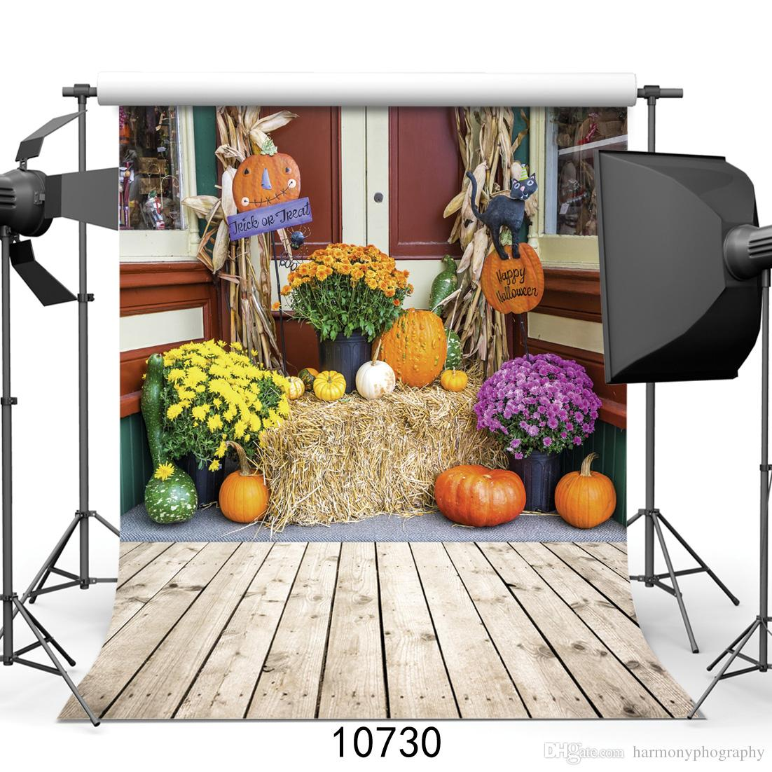 Happy Halloween zucche raccolto sfondo e crisantemi su una balla di paglia sfondi per lo studio del partito fotofono neonato