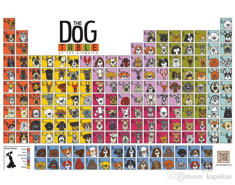Животное Плакат Собака Таблица Элементов Плакат Home Decor Обои Арт Плакаты Печать Фотобумаги 16 24 36 47 дюймов
