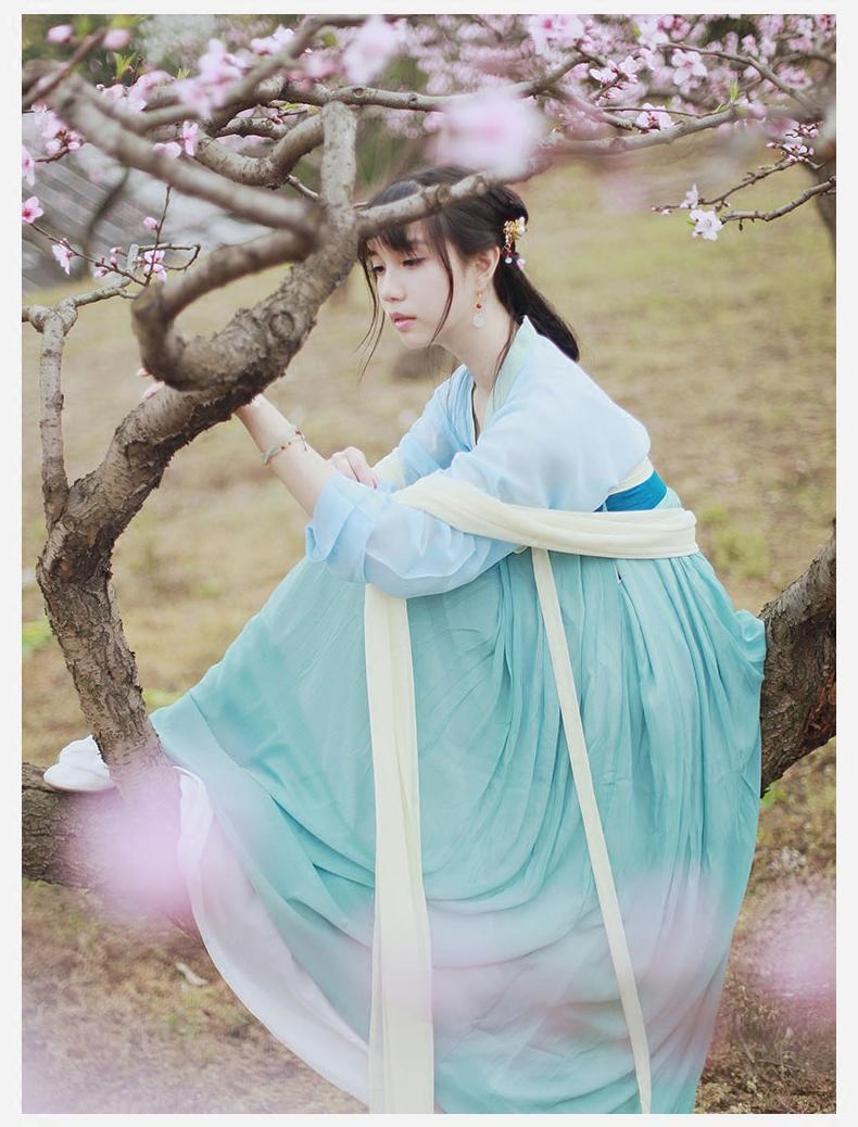 Traditional Women Tang Dynasty Ancient Chinese Costume Beautiful Women Dance Dress Princess Han Dynasty Chinese Hanfu Clothing