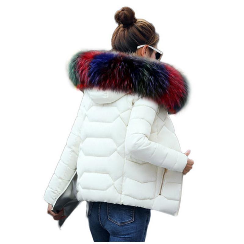 SMFOLW Winter Jacket Women winter warm down jacket women short paragraph Slim Artificial Fur collar large yards women's cotton S18101504