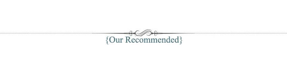 Our Recommended