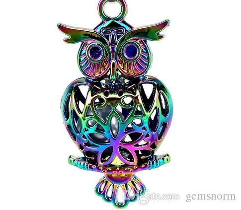 Rainbow Color Owl Birds Beads Jaula Imán Hebilla Locket Colgante Aceite Esencial Difusor Oyster Pearl Jaula Joyería Making A48
